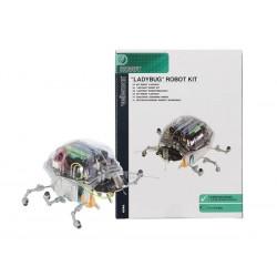 kit Robot Ladybug