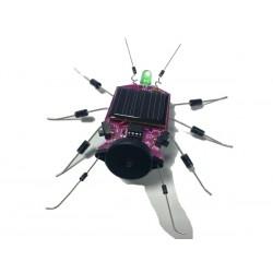 kit insecte à énergie Solaire